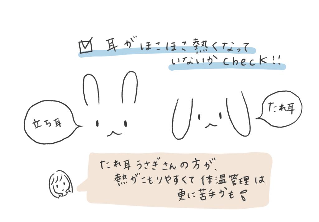 うさぎの耳の違いのイラスト